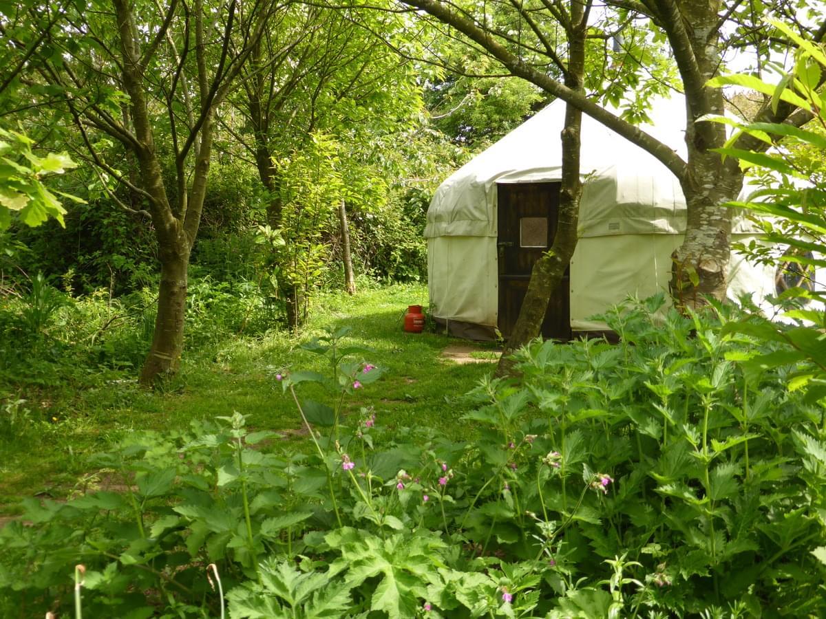 Anglesey Tipi and Yurt Holidays - Photo 3