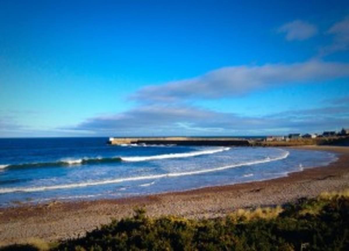 West Beach Caravan - Photo 4
