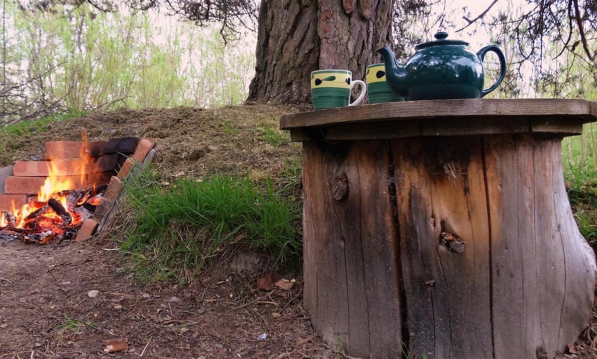 The Old Pine Yurt - Photo 5