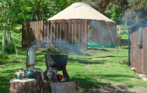The Old Pine Yurt - Photo 7