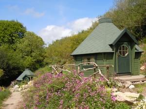 Acorn Camping and Glamping - Photo 3