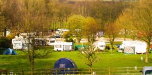 Eden Tree  Caravan Park - Photo 3