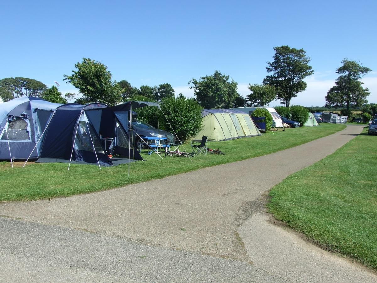 Tregarton Park - Photo 12