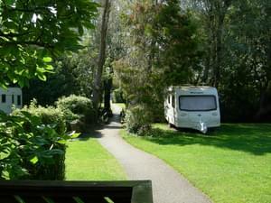 Whitemead Caravan Park - Photo 3