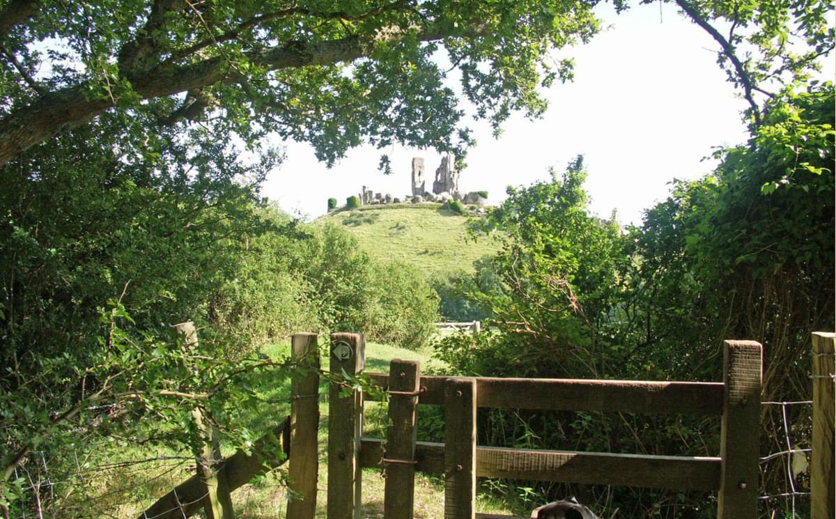 Norden Farm Camp Site - Photo 3