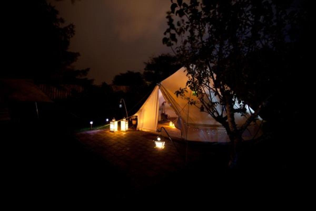 Grove Lane Glamping - Photo 1
