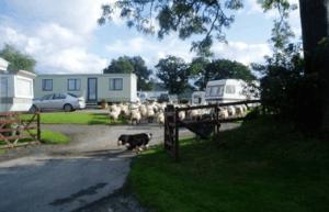 Bryncrach Farm Caravan Site - Photo 1
