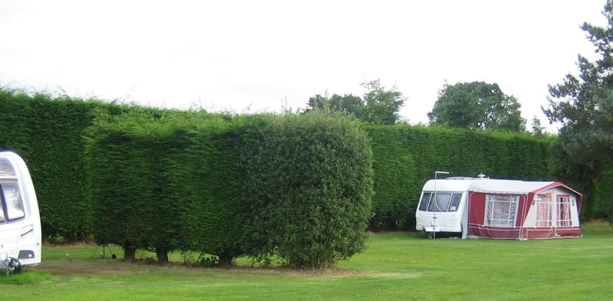 Swallow Hall Caravan and Camping Site - Photo 8