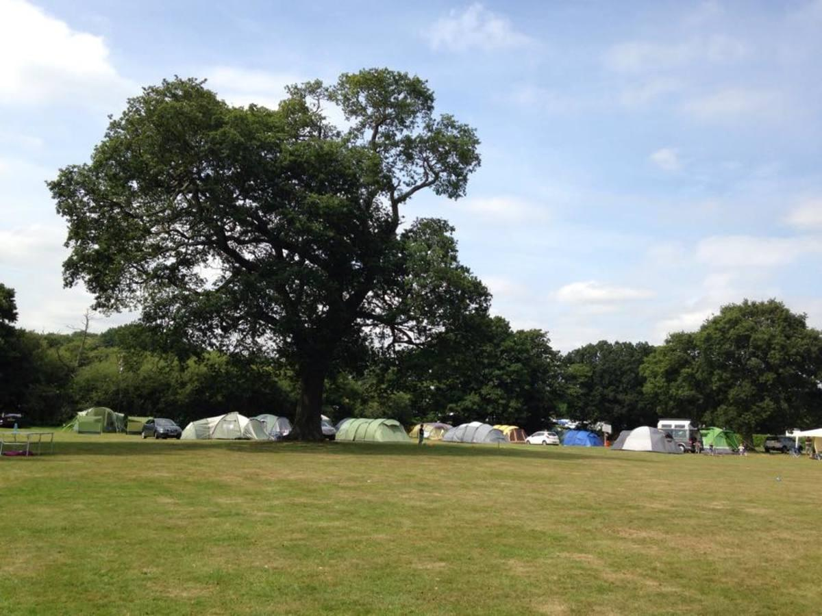 South Lytchett Manor Caravan Park - Photo 7