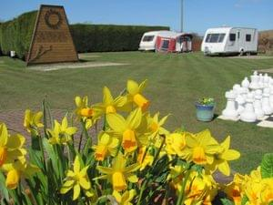 Woodland Gardens Caravan Site - Photo 5