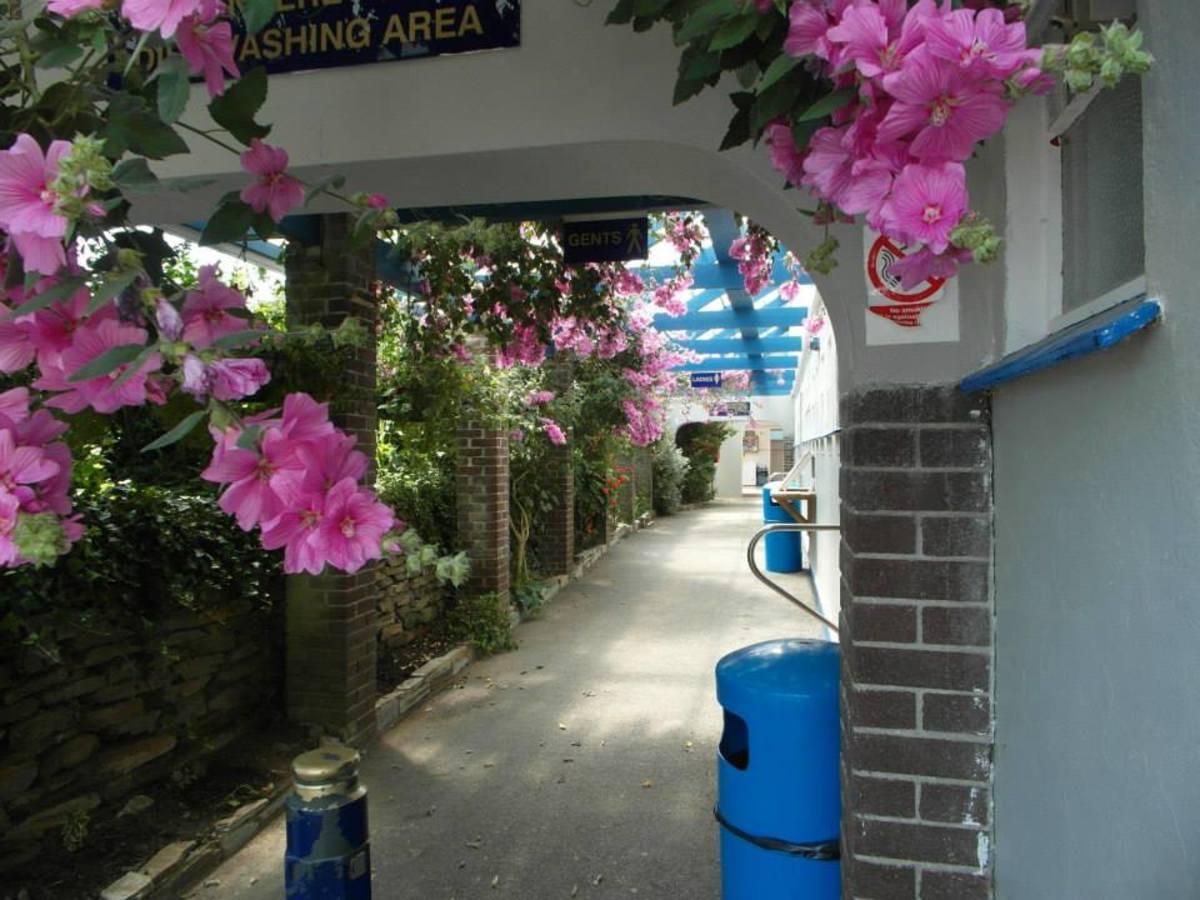 Seaview International Holiday Park - Photo 10