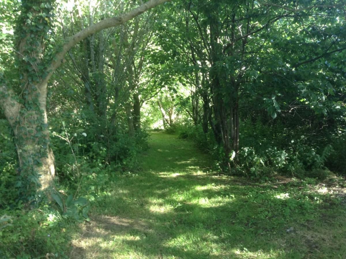 Gwendreath Farm Holiday Park - Photo 6