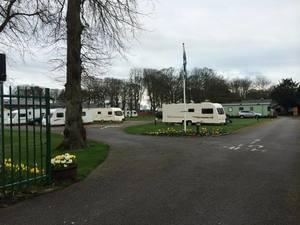 Woodland Caravan Park - Photo 2