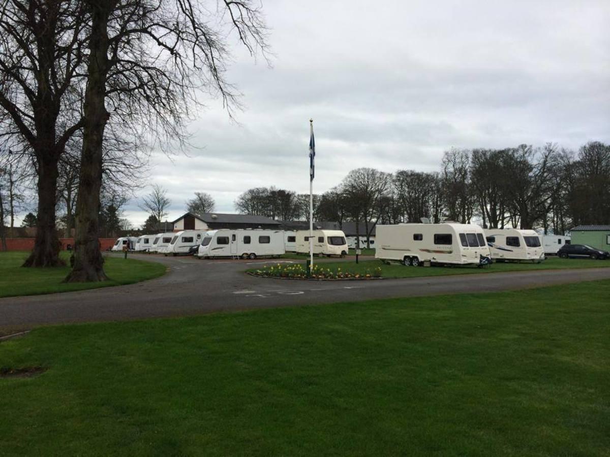 Woodland Caravan Park - Photo 1