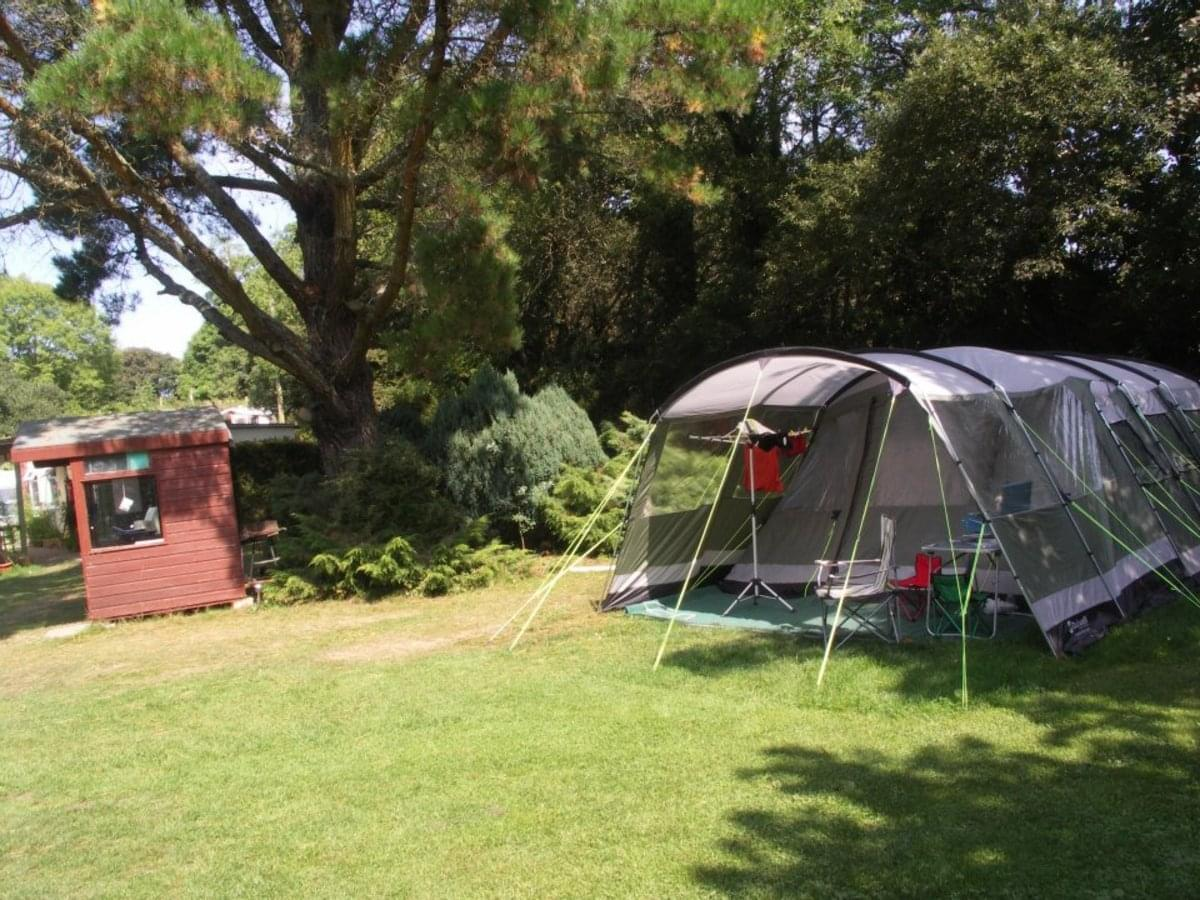 Poldown Camping and Caravan Park - Photo 5