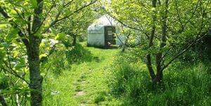 Anglesey Tipi and Yurt Holidays - Photo 7