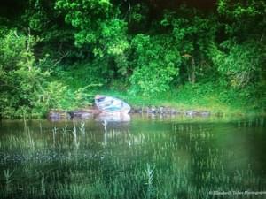 Cong Camping, Caravan & Glamping Park - Photo 42