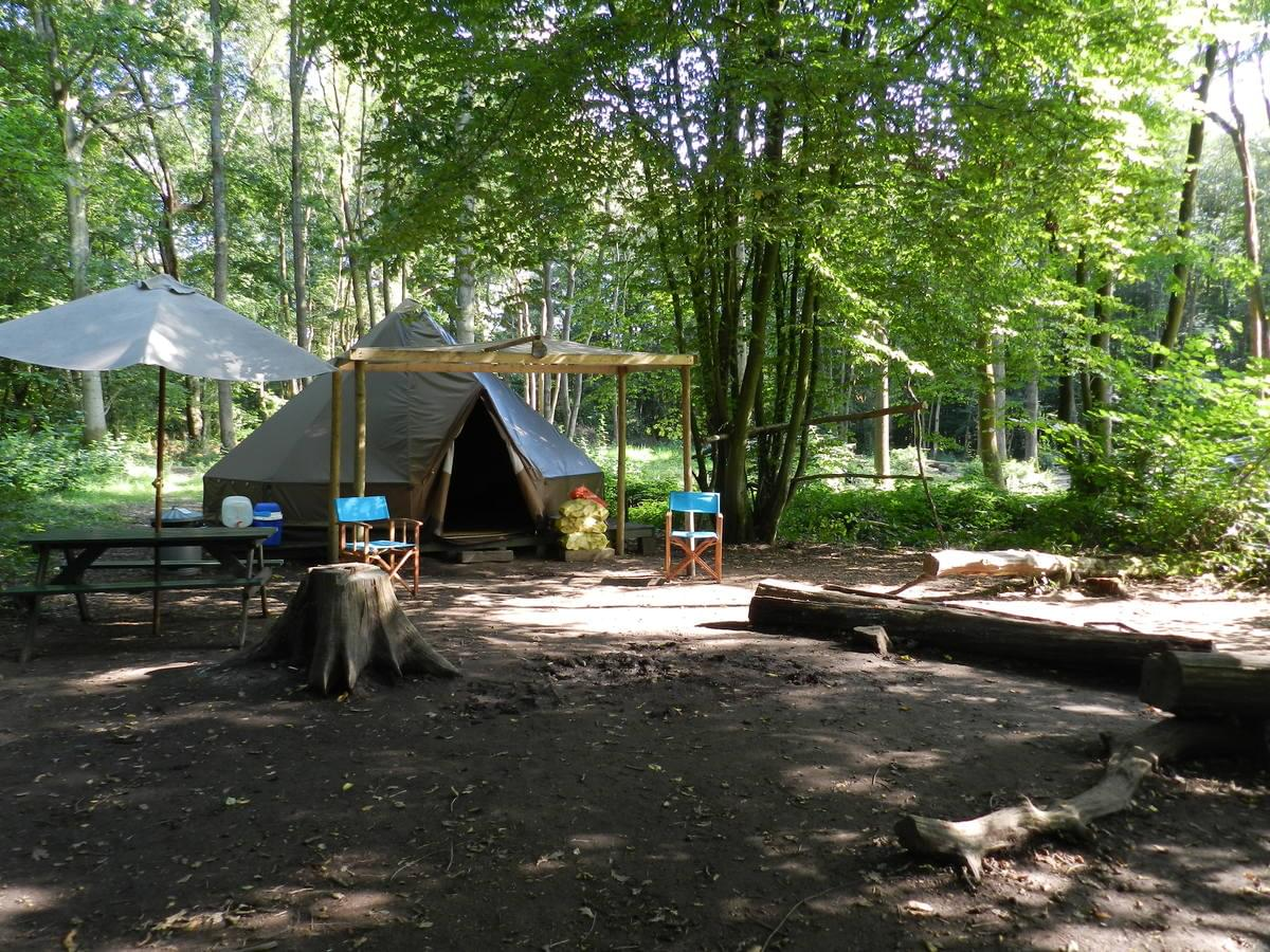 Wild Boar Wood Campsite - Photo 5