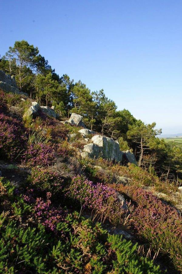 Sites et Paysages Le Panoramic - Photo 24