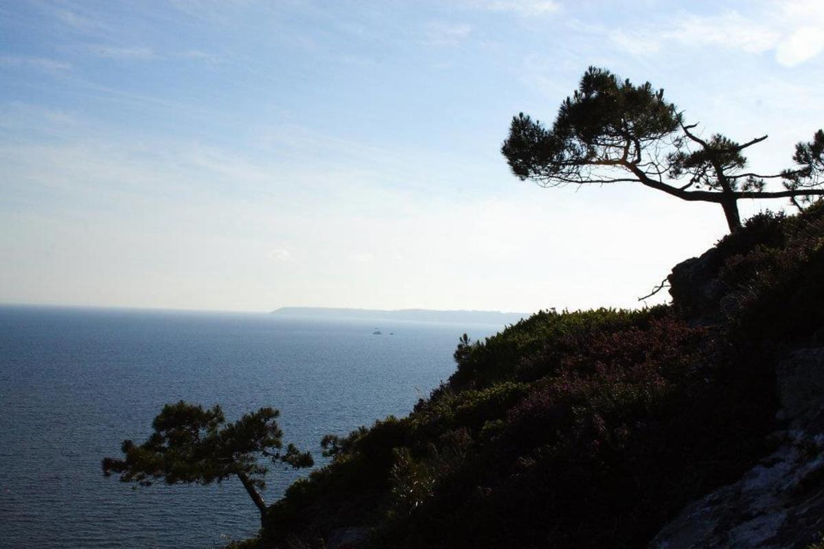 Sites et Paysages Le Panoramic - Photo 26