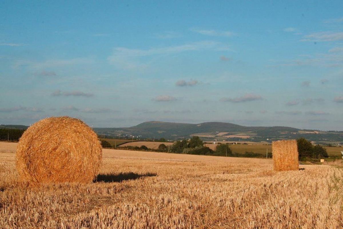 Sites et Paysages Le Panoramic - Photo 27