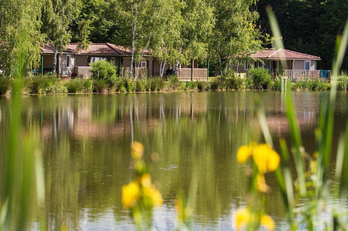 Les Castels Les Bois du Bardelet - Photo 5