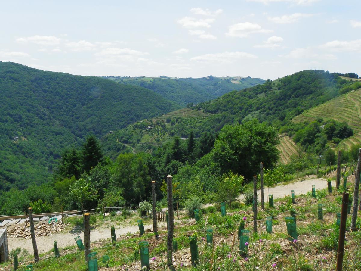 Camping Qualité le Val de Saures - Photo 45