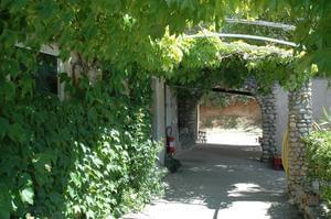 Domaine du Petit Arlane - Photo 10
