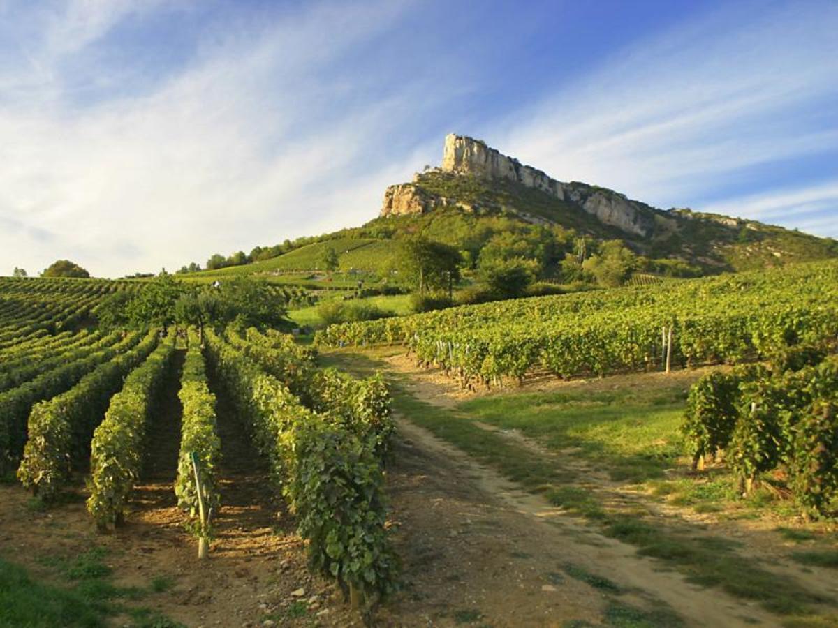 Les Castels Château de L'Epervière - Photo 46