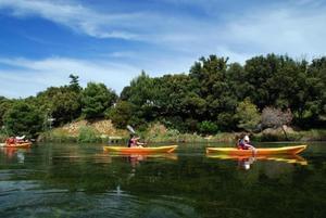 Riva Bella Thalasso & Spa Resort - Photo 38