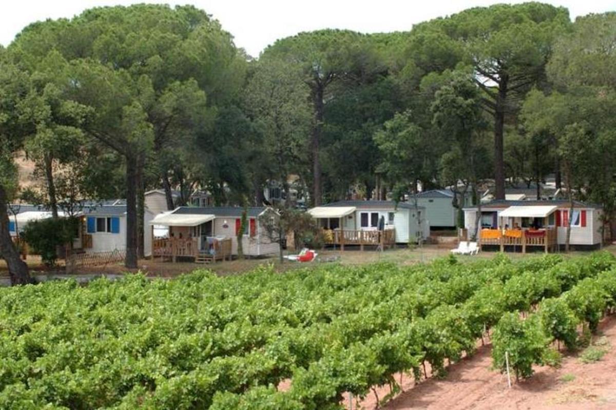 Camping Les Cigales - Photo 4
