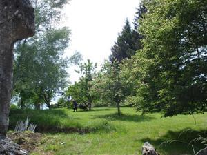 Sites et Paysages Le Moulin - Photo 1202