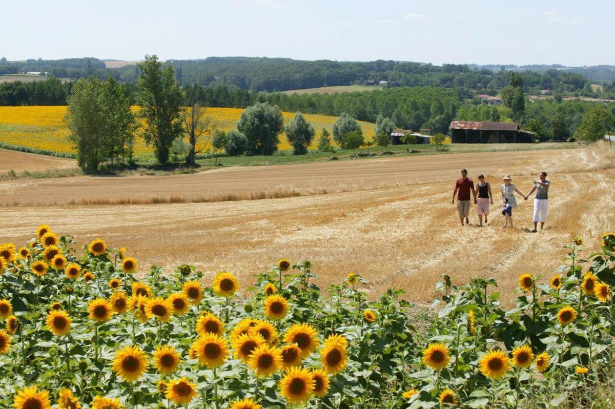 Sites et Paysages Le Moulin - Photo 1297