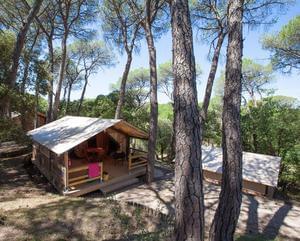 Camping Le Mas de Reilhe - Photo 2