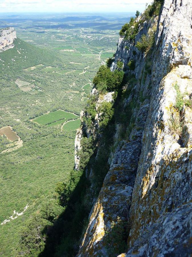 Camping Le Mas de Reilhe - Photo 44