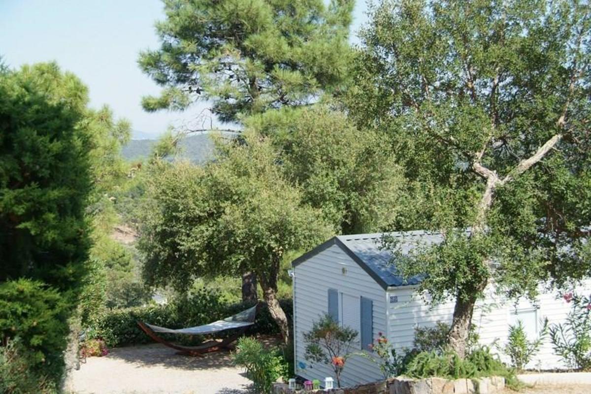 Domaine de la Bergerie - Photo 6