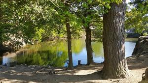 Camping L'Eden - Photo 24
