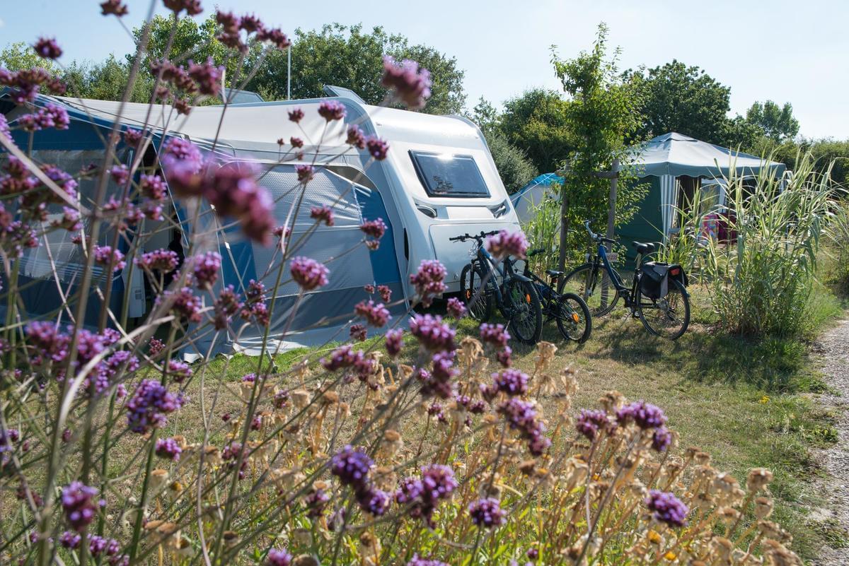 Flower Camping Le Petit Paris - Photo 6