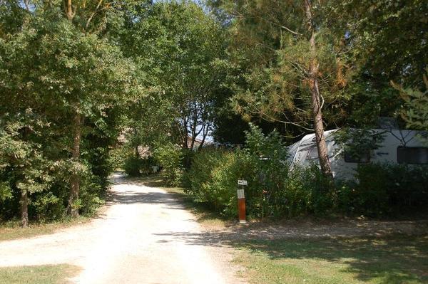 Camping de Bergougne - Photo 6