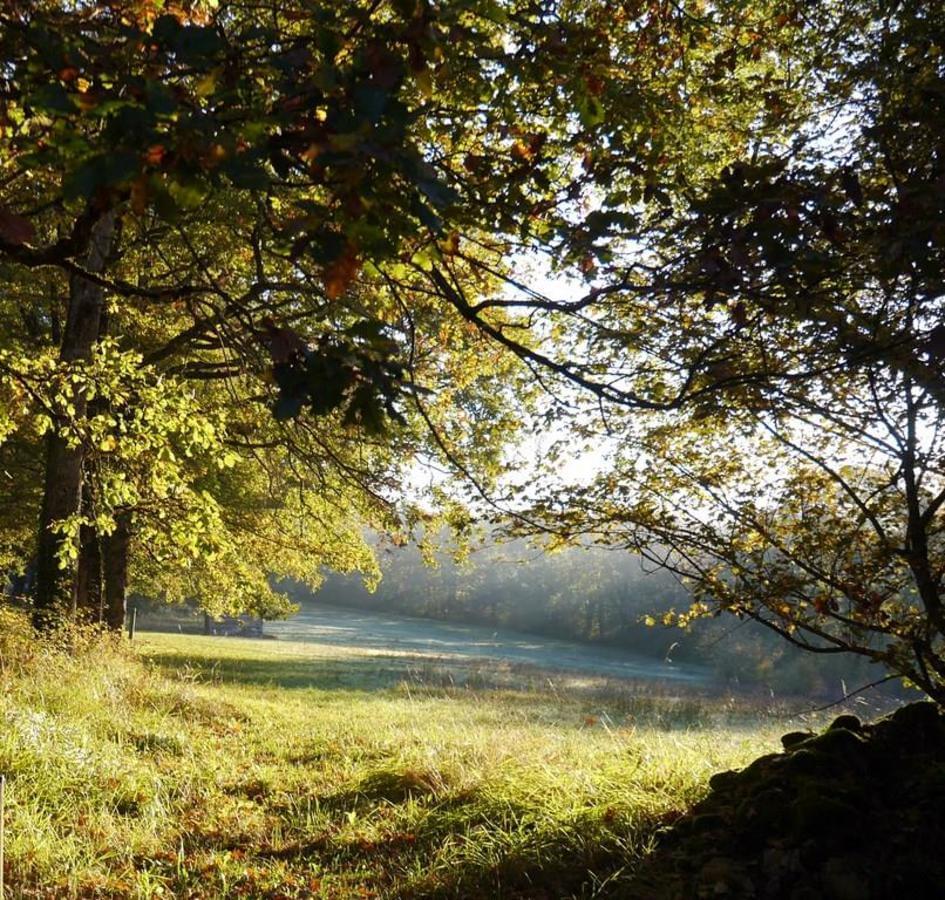 Flower Camping Le Lac aux Oiseaux - Photo 7
