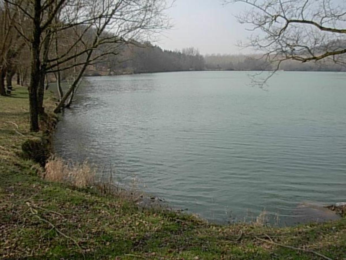 Domaine du Lac de Neguenou - Photo 11