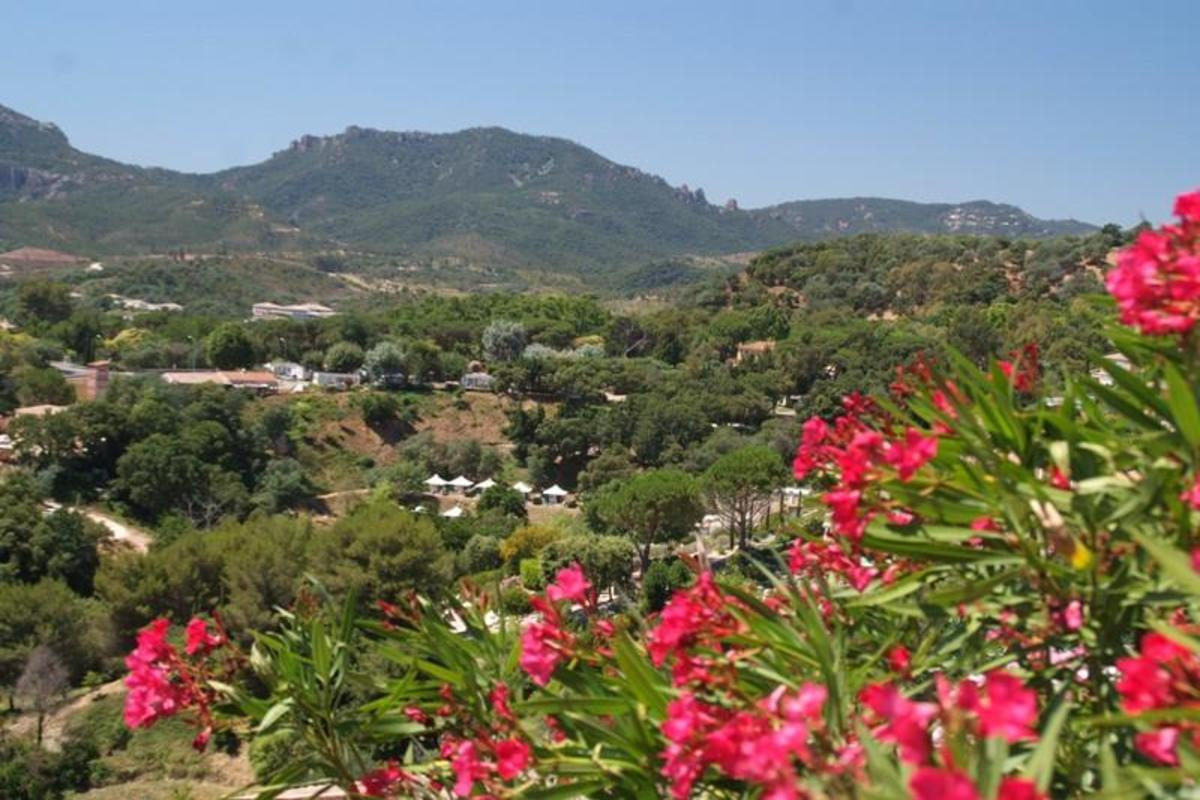 Camping Plateau des Chasses - Photo 7