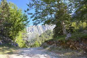 Camping PYRENEES NATURA - Photo 17