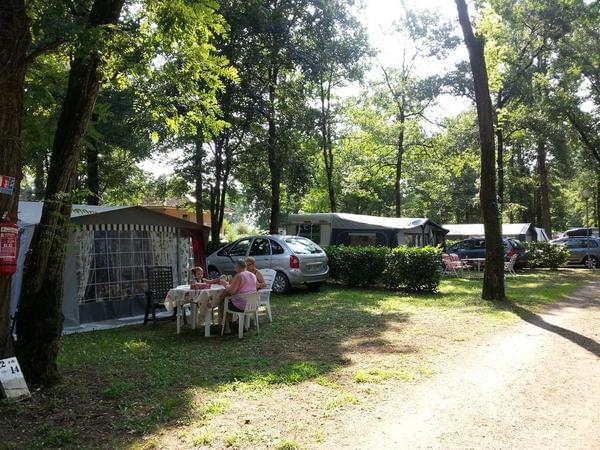 Camping LES CHALETS SUR LA DORDOGNE - Photo 2