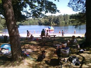 Domaine du Lac de Feyt - Photo 7