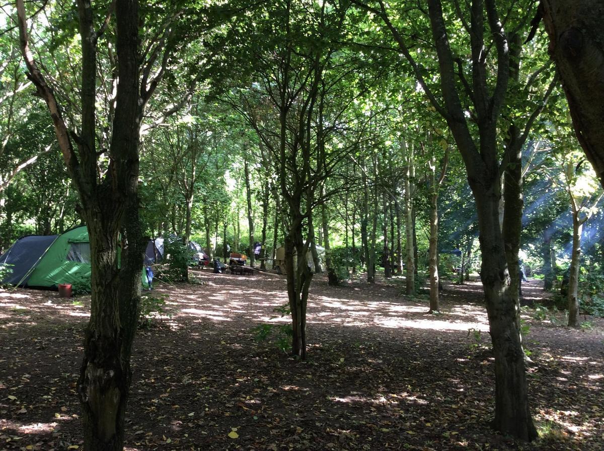 Les Castels L'Orangerie de Beauregard - Photo 2