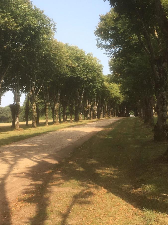 Les Castels L'Orangerie de Beauregard - Photo 6