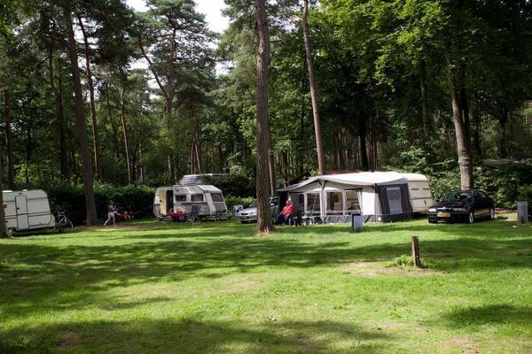 Vakantiepark Bonte Vlucht - Photo 2