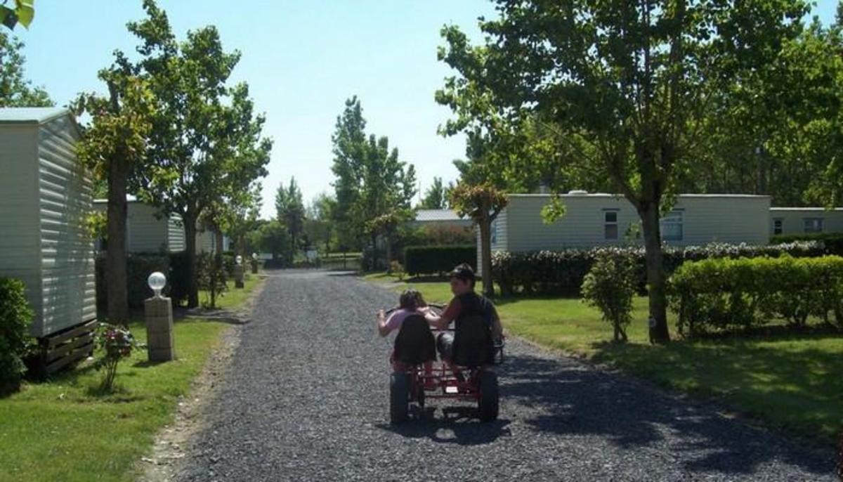 Domaine Le Jardin du Marais - Photo 50