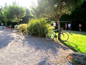 Domaine Le Jardin du Marais - Photo 53